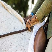 ThinLine 'No Slip' Plain Reins