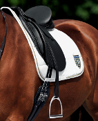 Passier Stirrup Leathers