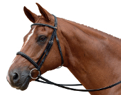 Albion KB Competition Cavesson 20mm Snaffle Bridle