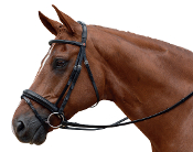 Albion KB Competition 30mm Cavesson Flash Snaffle Bridle