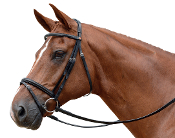 Albion KB Competition 20mm Cavesson Flash Snaffle Bridle