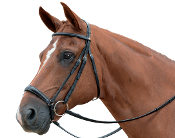 Albion KB Competition Drop Nose Snaffle Bridle