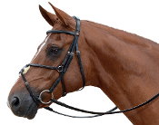 Albion KB Competition Grackle Snaffle Bridle