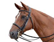 Albion KB Competition Weymouth Bridle - Padded/20mm