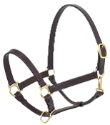 Brown Leather Horse Halter. Triple stitching - obvious quality. Camelot Brand