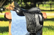 Albion Platinum Royale Dressage