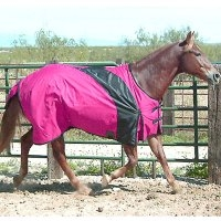Exselle Turnout Blanket
